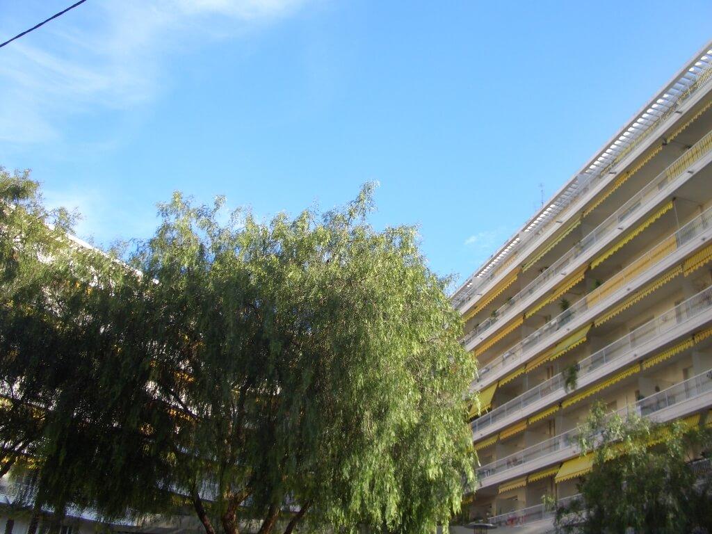 nice-centre-boulevard-gambetta